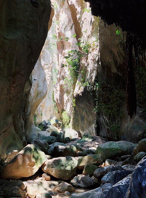 Даже в сухой сезон в ущелье мокро: под ногами речка, со стен капает вода