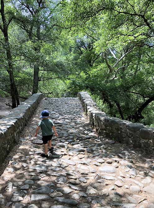 Сыну очень понравилась прогулка вдоль реки — можно было прыгать по камням и упавшим деревьям