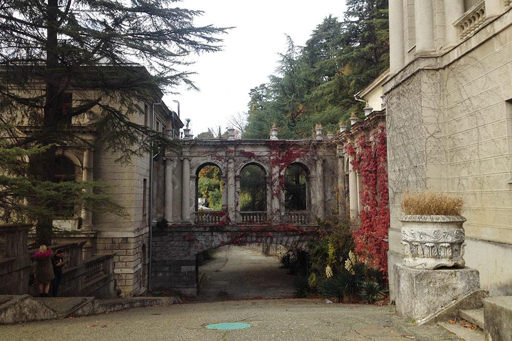 Арка и стена с красным плющом — одно из самых популярных мест для фотосессий в санатории