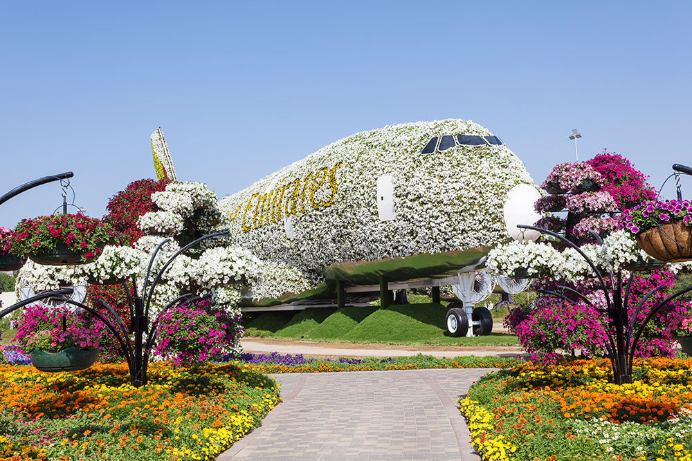 В парке стоит самолет AirbusA380, который полностью украсили цветами. Он попал в Книгу рекордов Гиннесса как крупнейшее цветочное сооружение. Фото: Philip Lange / Shutterstock