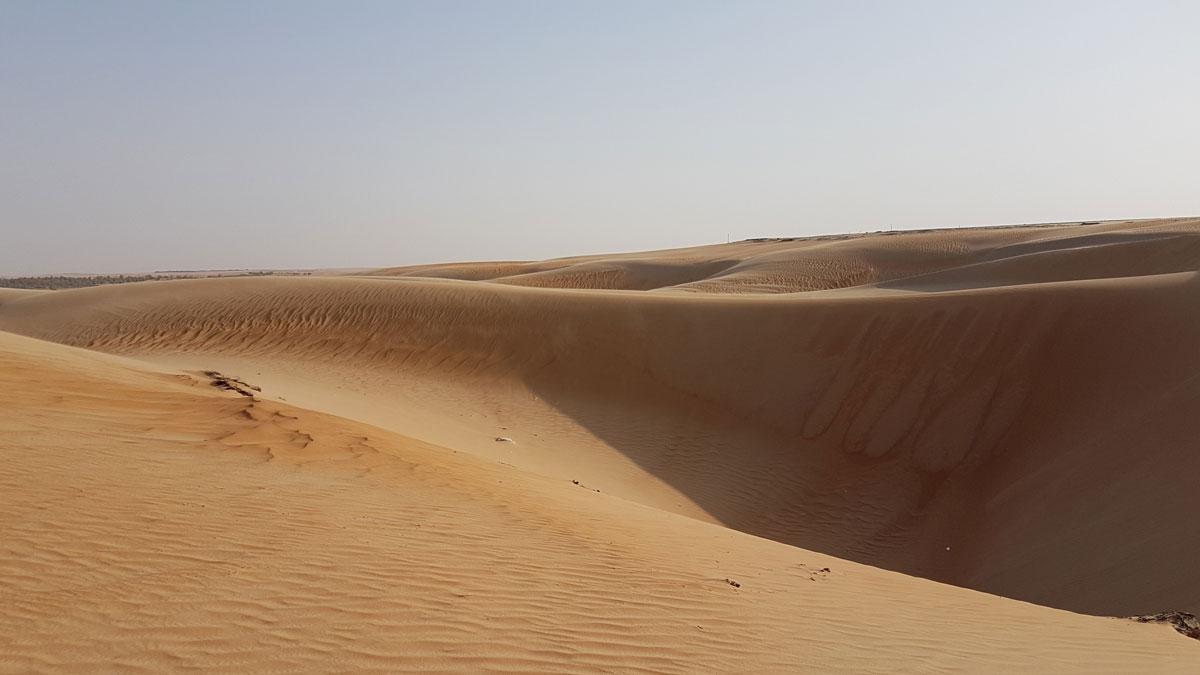 Пустыня Лива в эмирате Абу-Даби