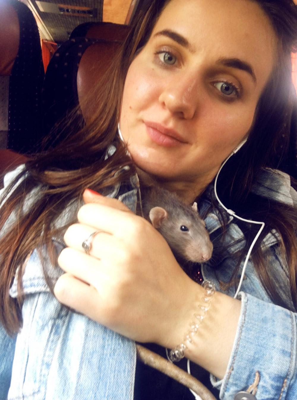 В автобусе Москва — Дюссельдорф с крысой. Длянас это первое путешествие на автобусе
