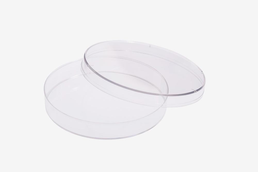 Так выглядит чашка Петри. Источник: Bellco Glass
