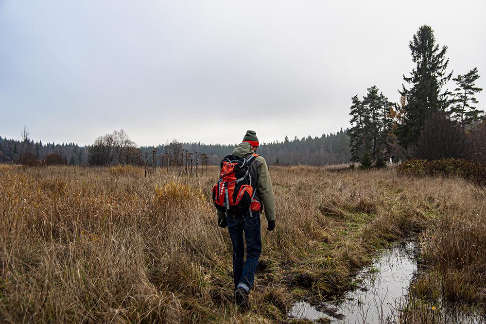 В самом начале пути вместо тропы мы обнаружили затопленное поле без указателей. Направление движения удалось понять лишь благодаря информационному щиту. На фото это белая полоска справа