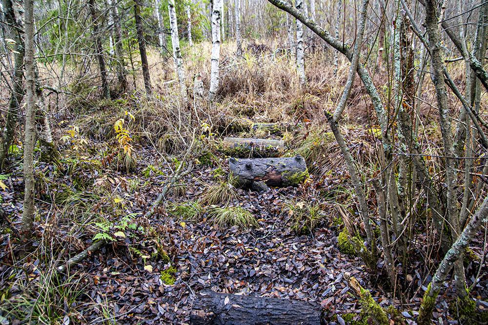 Тут от тропы остались лишь следы. Пришлось повернуть обратно
