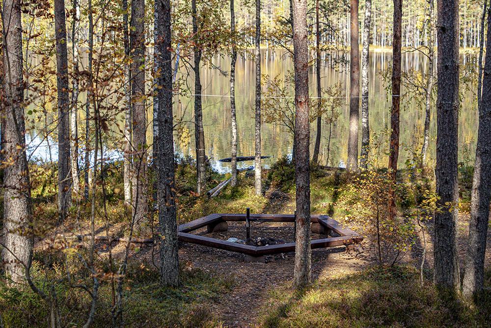 Место для мангала на берегу Лебяжьего озера