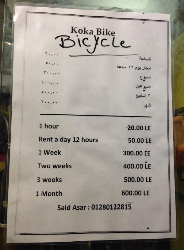 Арендовать велосипед кросс-кантри с переключением скоростей можно за 600 фунтов (2100 р.) в месяц