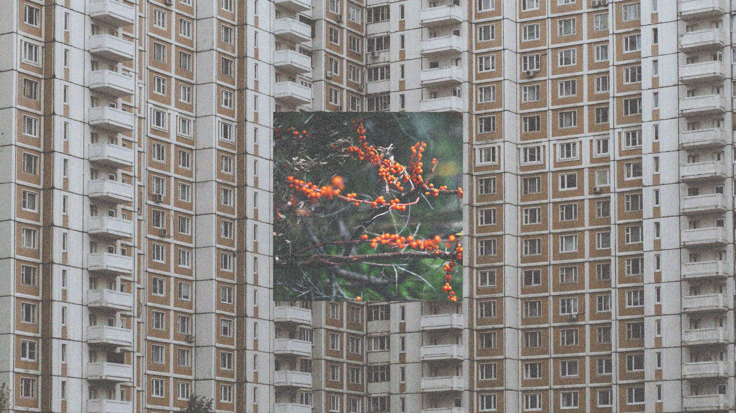«Хочу, чтобы Подольск был похож на Манчестер»: 8 проблем подмосковных городов