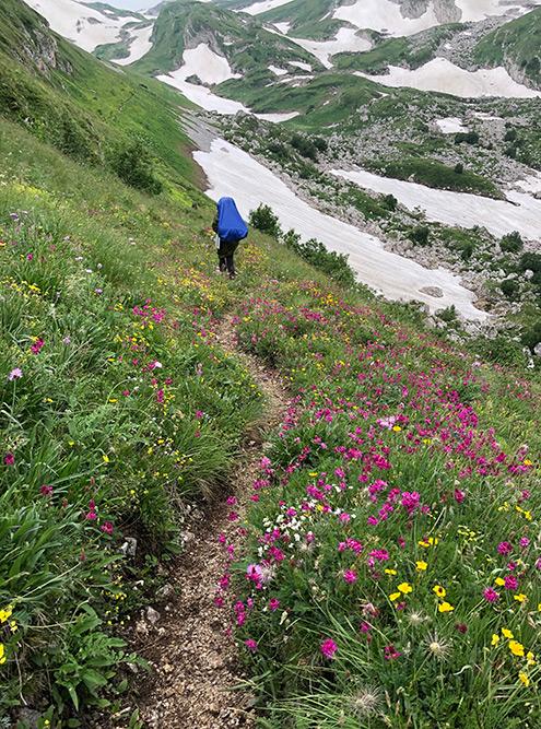 В заповеднике нельзя жечь костры, мусорить и рвать цветы. Хотя иногда очень хочется