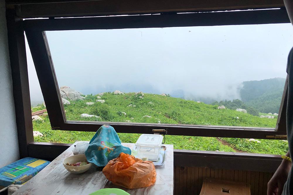 Вид из окна домика, где мы покупали сыр. Недалеко находятся пастбища