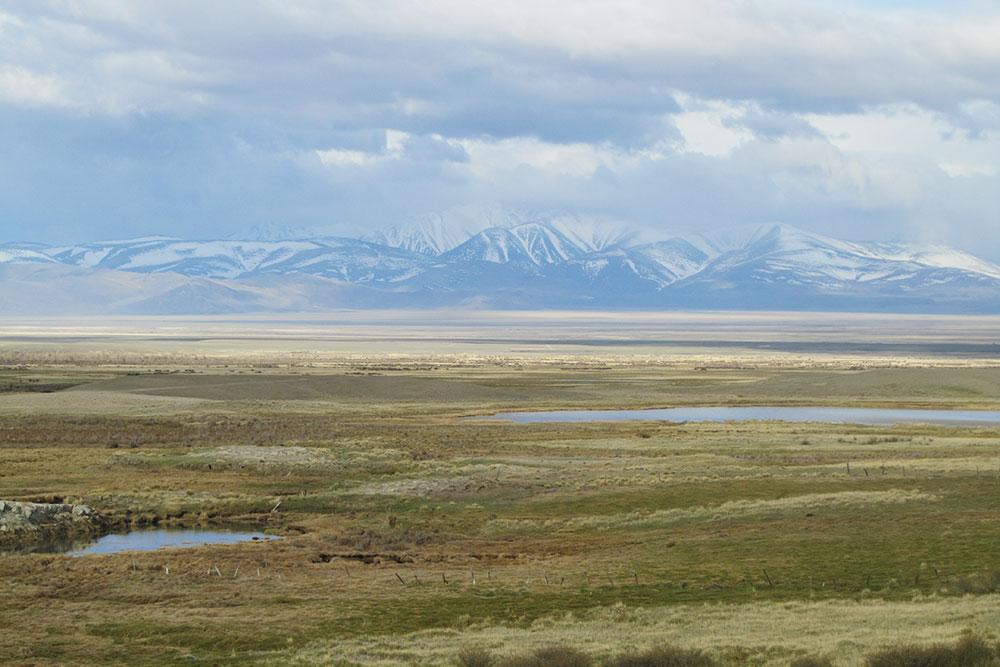 Озера в Чуйской степи. На них часто встречаются дикие утки или другие водоплавающие птицы