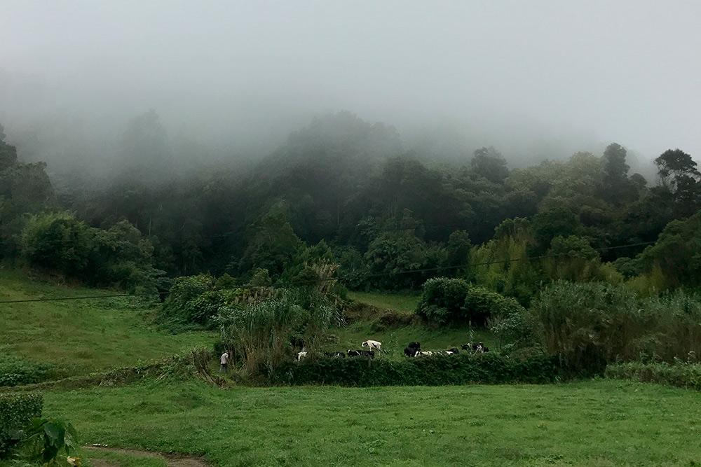 Туман застал нас во время попыток полюбоваться озерами Сети-Сидадиш. Я расскажу о них дальше