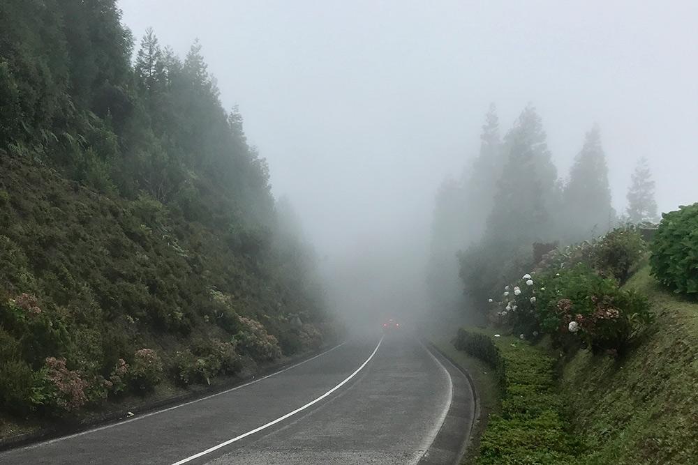 Когда туман, водители снижают скорость
