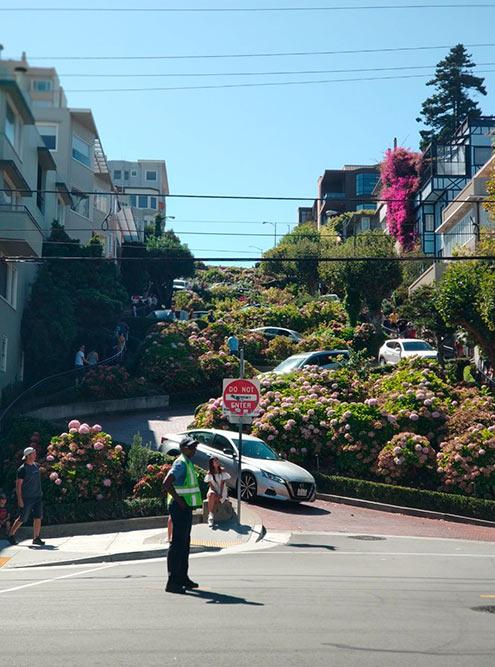 По команде регулировщика туристы, как голодные тигры, ринутся фотографировать улицу