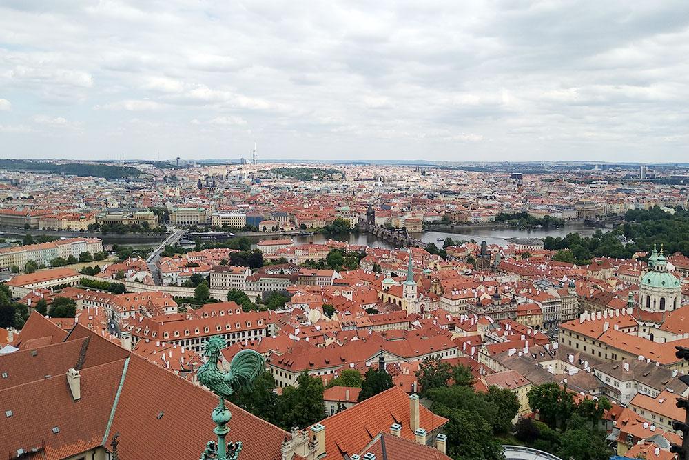 Вид на город со смотровой башни собора. Ее можно посетить за 200 Kč (560 р.)