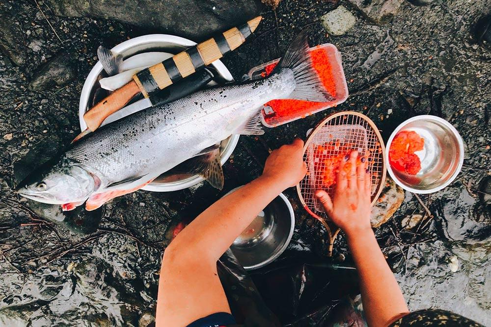На Камчатке можно поймать рыбу за пару минут. Справится даже начинающий. Источник: Арина Дроздович
