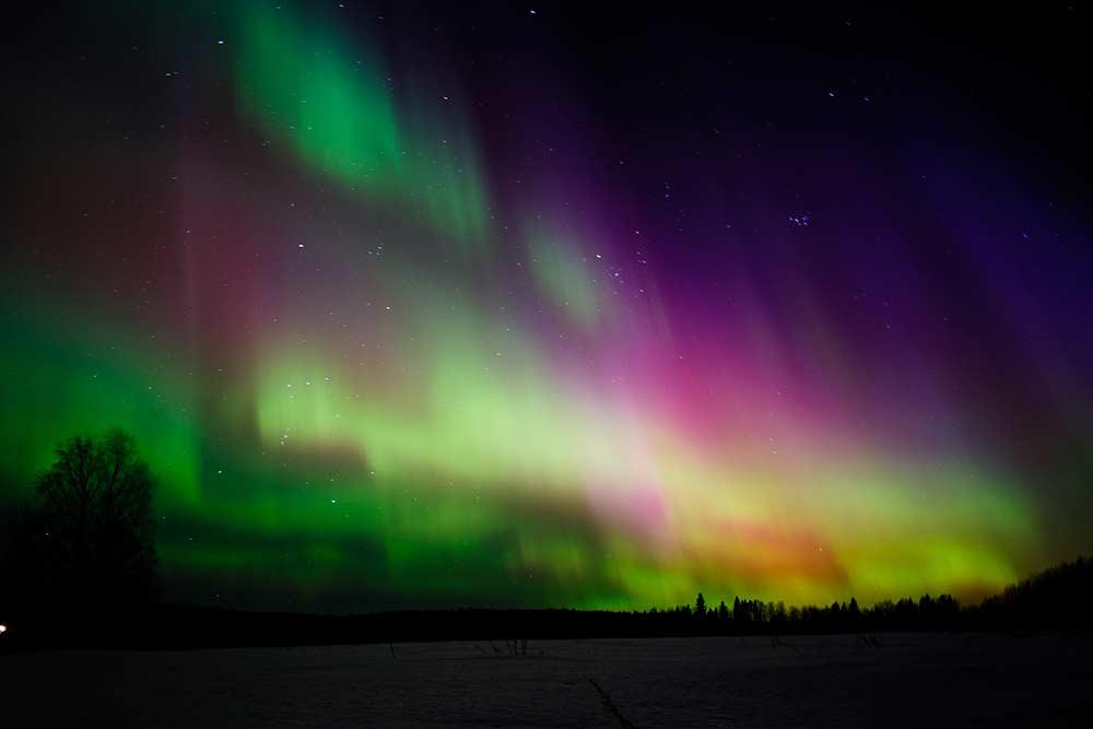 Северное сияние в Сыктывкаре. Цвет зависит от того, с каким газом сталкиваются заряженные солнечные частицы. Кислород дает зеленое свечение, азот — голубое или красное, а гелий — фиолетовое. Источник: Александр Кочкин