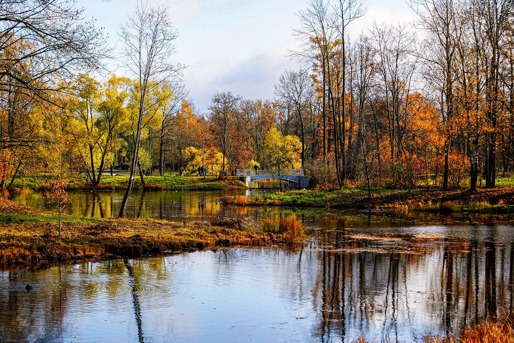 Осенью в Александровском парке в Пушкине особенно красиво