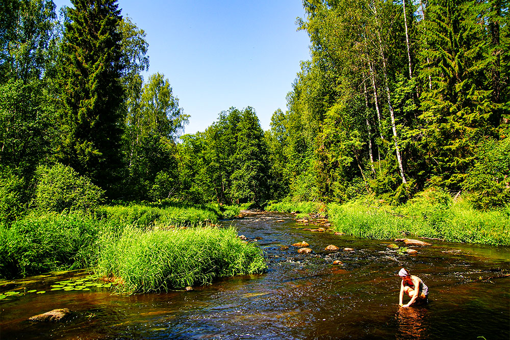 На берегу реки Рощинки прохлаждаются в жаркий день и устраивают пикники