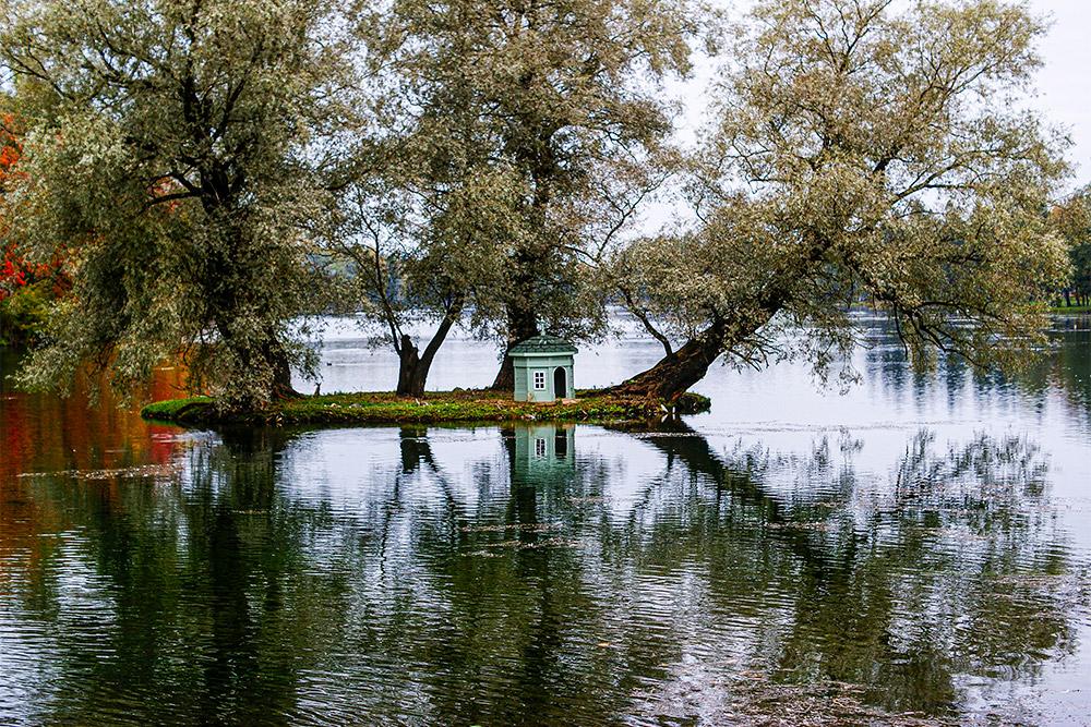 В этом домике на Белом озере жила пара лебедей. 11 мая 2019года самка погибла всхватке сбродячей собакой, когда защищала гнездо складкой. Место в гнезде занял самец. Онвысидел оставшееся яйцо и водиночку вырастил вылупившегося птенца