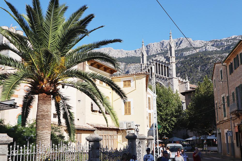 Типичный вид на острове: пальма, горы и старинные здания