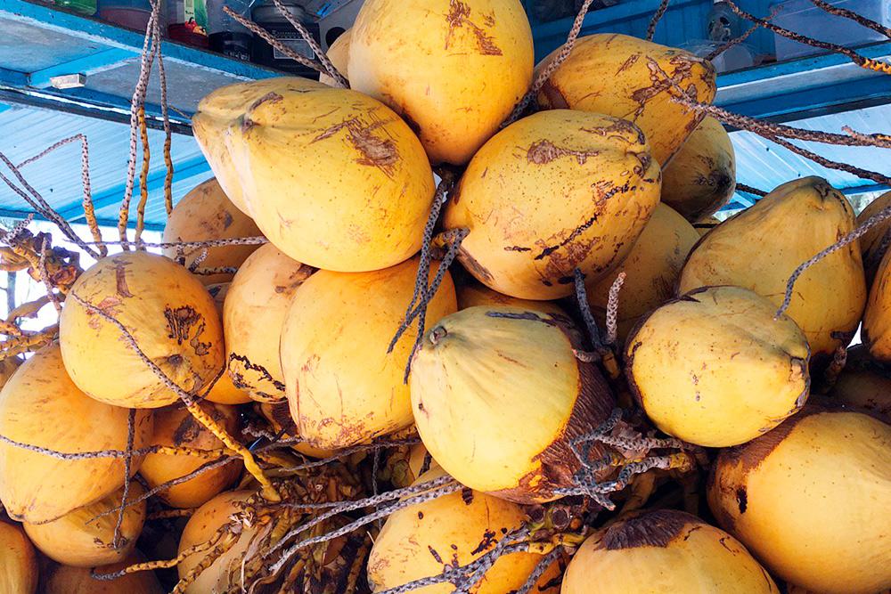 Гигантские питьевые кокосы на пляже Мон-Шуази