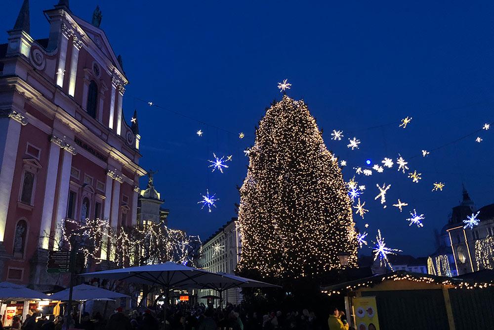 Главная елка Любляны