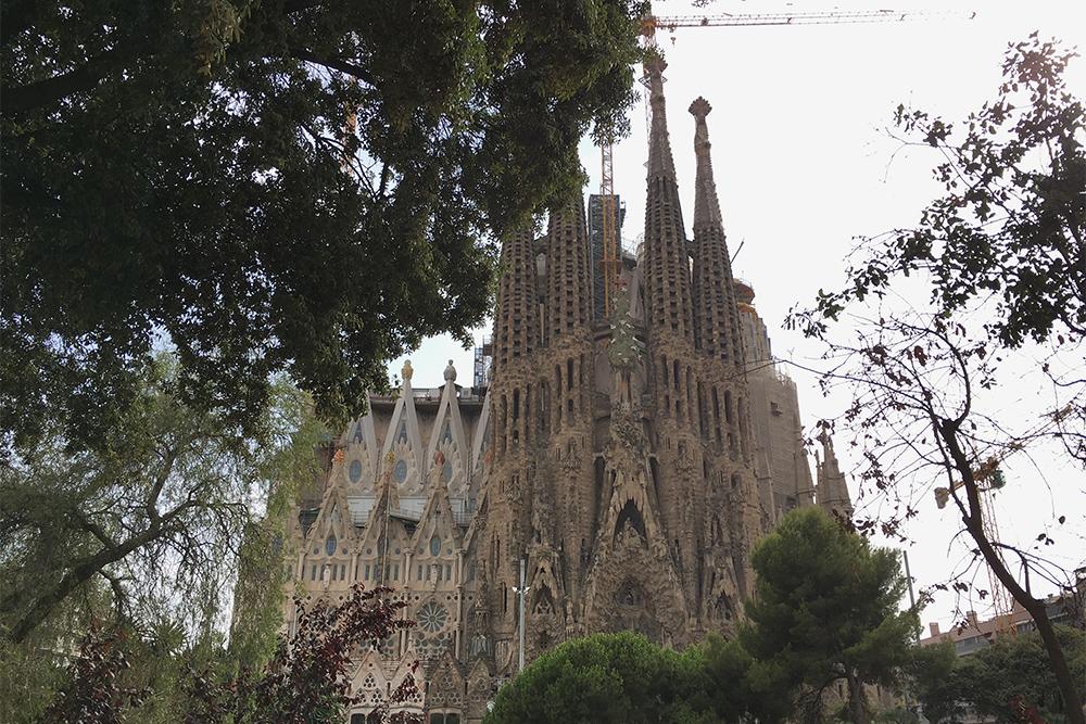 Если приезжать в Барселону каждый год, можно наблюдать, как на глазах формируется история и растет самый долгостроящийся собор