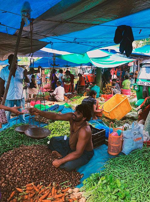 Ланкийцы взвешивают овощи и специи на весах с чашами. Из-залетящих грузиков и криков зазывал на рынке шумно