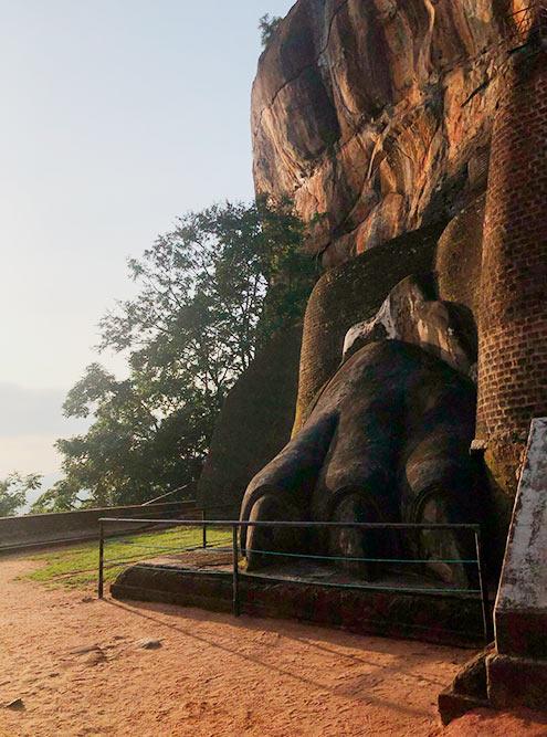 Лапы, окружающие лестницу, которая ведет на наскальное плато