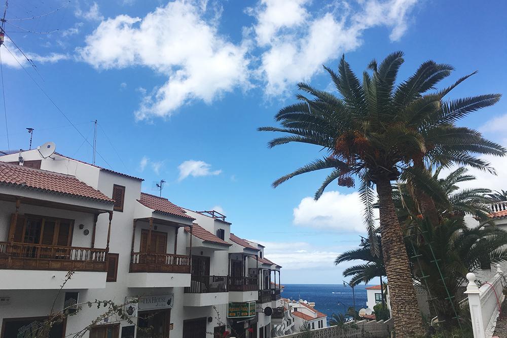 Вместо пятизвездочного отеля мы выбрали апартаменты с видом на море и пальмы недалеко от Плайя-де-ла-Арена