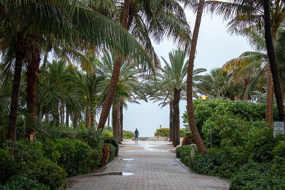 В июне в Майами стояла духота и периодически шел сильный дождь