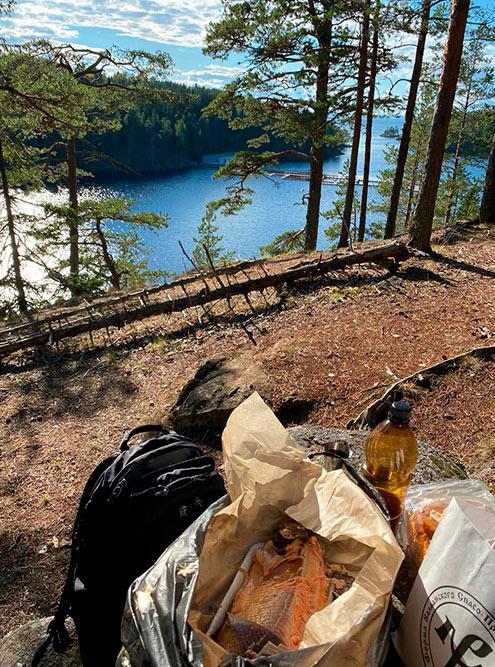 Наш пикник на горе над Ладогой. После пикника забрали мусор с собой