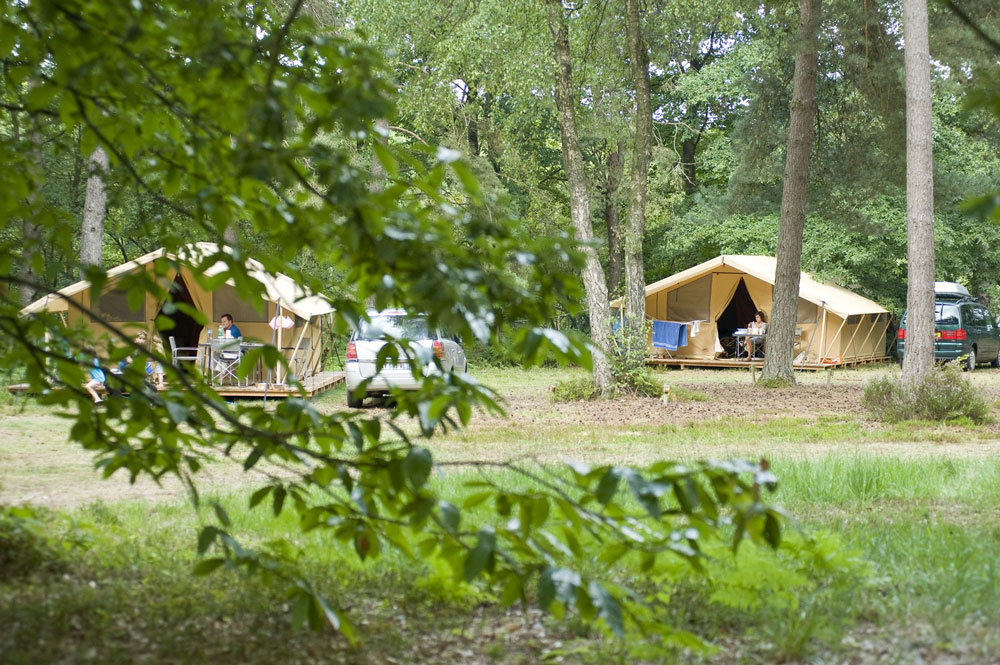 Так выглядит кемпинг Huttopia Lac de Sille недалеко от Френе-сюр-Сарта — чистая ухоженная территория, удобно для всех, кто путешествует на машине. Фото: Coolcamping.com