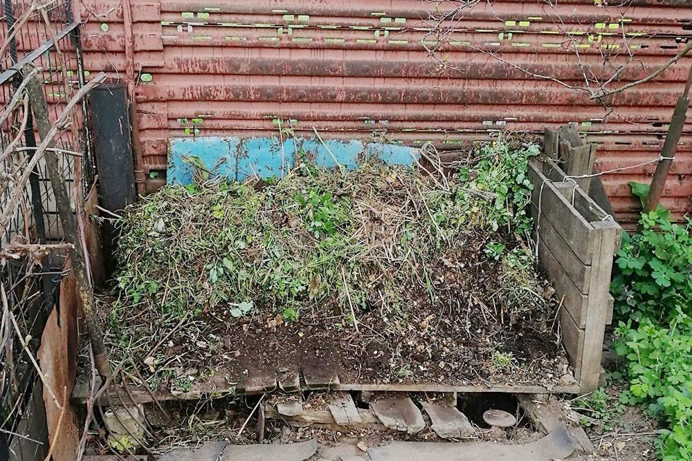 Я кидаю весь органический мусор вэту кучу и сверху чуть присыпаю землей. Затем вдело вступают земляные черви и другие микроорганизмы. Они постепенно перерабатывают органику вкомпост, который потом проваливается вяму поддеревянным настилом