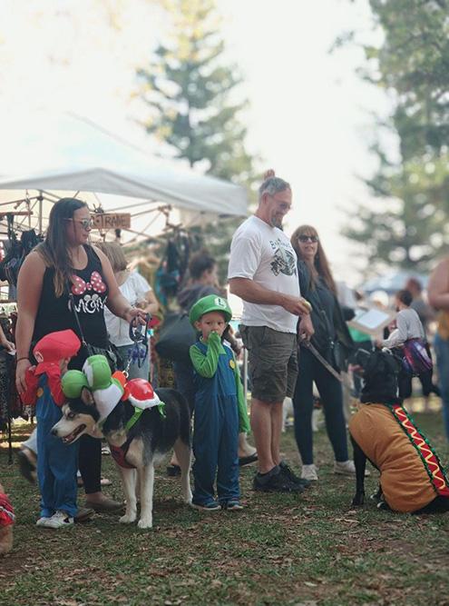 В одном из парков Сакраменто проходил маскарад для собак. Главный приз — огромная корзина сладостей и игрушек для псов
