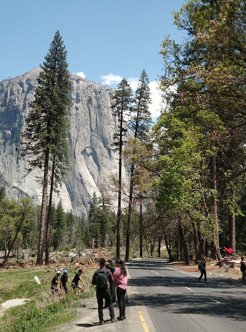 Йосемитский национальный парк и роща Марипоса с гигантскими секвойями
