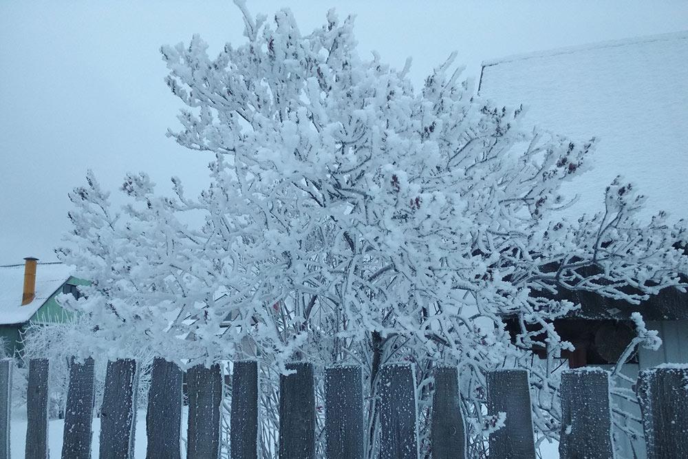 Зимой тоже очень красиво
