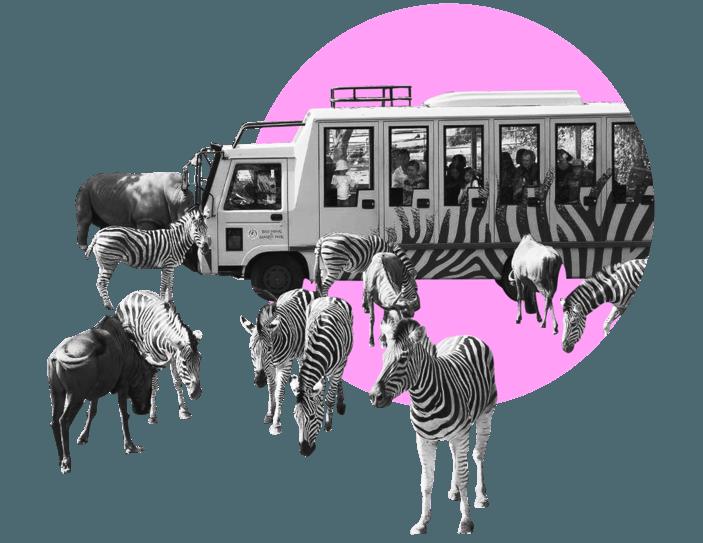 Сколько стоит отпуск в Азии: 4 истории о путешествиях, которые захочется повторить