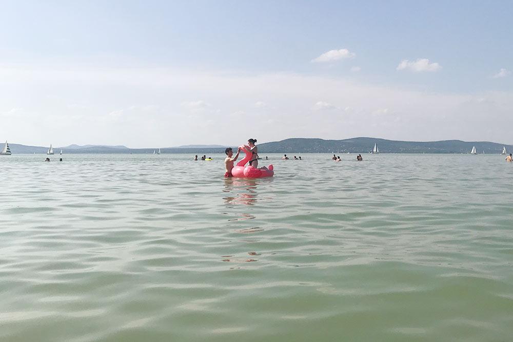 Озеро Балатон совсем неглубокое — можно зайти метров на200вперед, аводы все еще будет попояс