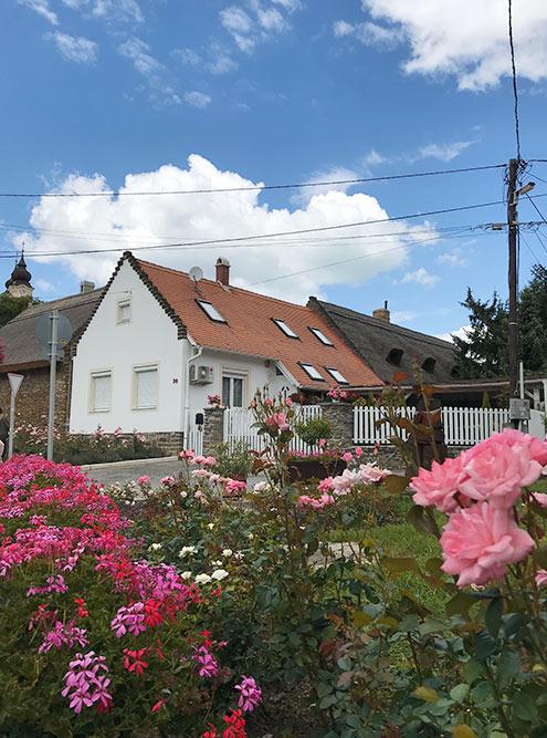 В Тихани невозможно не влюбиться вмаленькие дома счерепичными крышами. Большинство изних досихпор принадлежат местным жителям. Они поддерживают дома впрекрасном состоянии