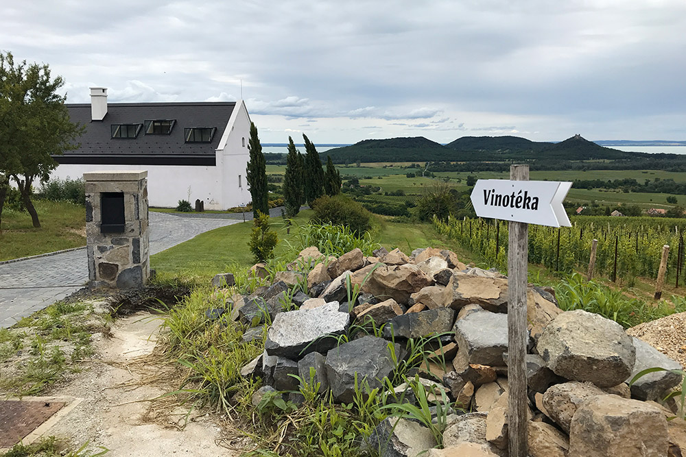 Винодельню «Гилвеши» основали в2012году — она одна изсамых молодых врегионе Бадачонь