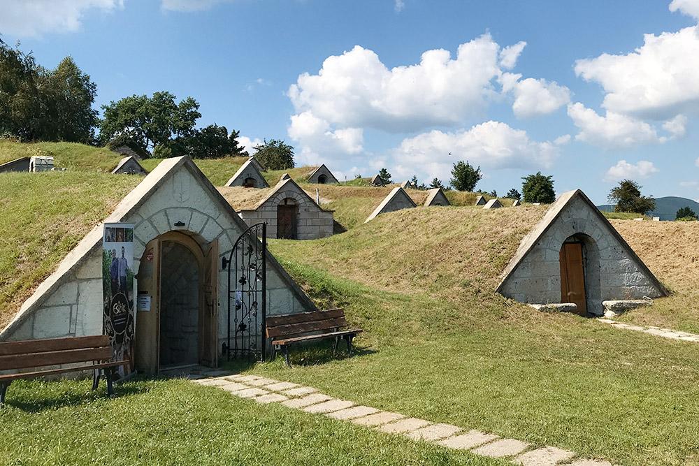 Погреба в деревне Херцегкут принадлежат разным токайским винодельням. Вних непроизводят вино, ахранят лишь понесколько бочек длядегустации. Таким образом, водном месте можно попробовать многие токайские вина