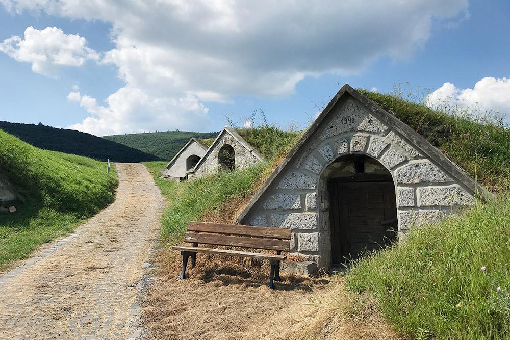 Большинство погребов было построено в 18—19 веках, ночасто нафасадах пишут годы основания виноделен, которым они принадлежат