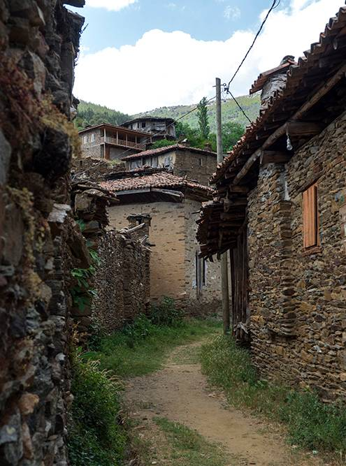 Почти все дома в деревне пустуют, на некоторых безнадежно висят таблички «На продажу»