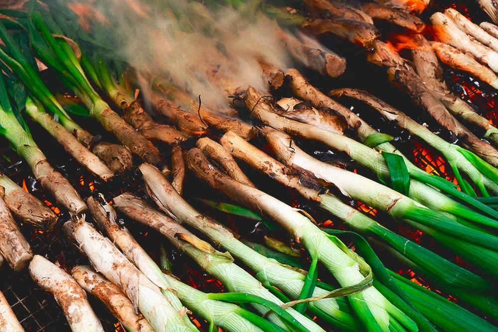 Молодой лук-кальсот готовят прямо на огне. Каталонцы так его любят, что даже посвятили ему отдельный праздник — Gran Festa de la Calçotada. Каждый год он проходит в городе Вальс в конце января. Фото: Shutterstock