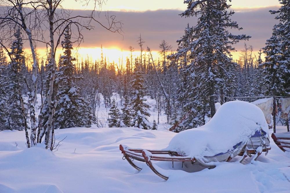 По словам моей однокурсницы, −15°С в Карелии ощущаются как −30°С в Норильске. Источник: Hans-Jurgen Mager / Unsplash