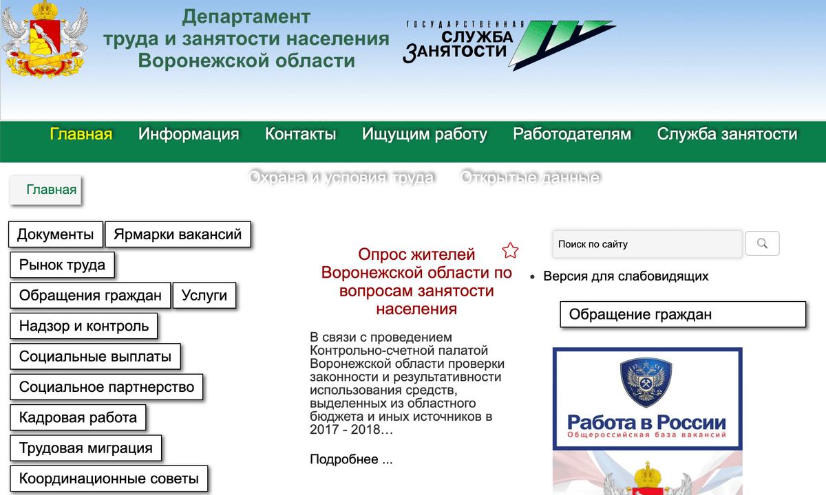Стартовая страница одного из центров занятости в Воронеже
