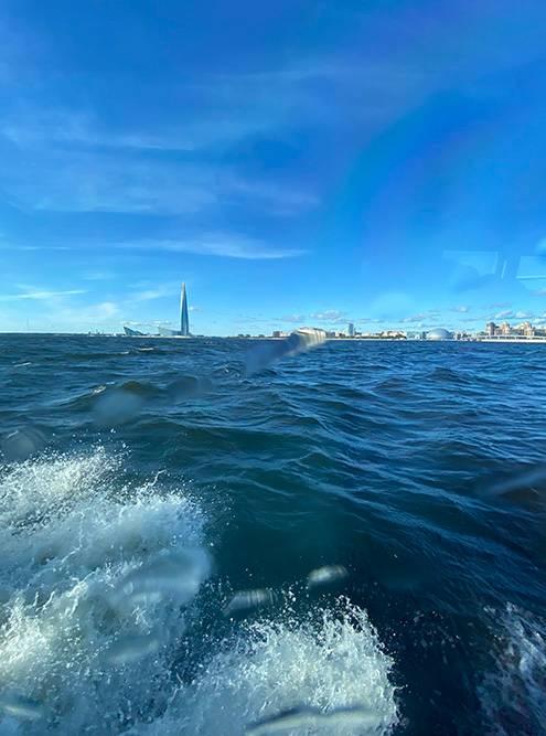 Когда в Финском заливе высокие волны, теплоход начинает качать