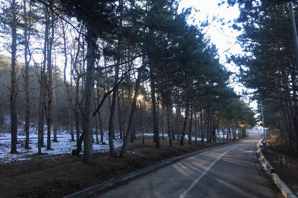 Утреннее солнце на Машуке и дорожка, по которой мы бегаем